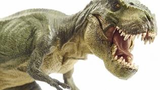 Отдых впарке динозавров