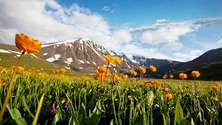 Отдых вРеспублике Алтай