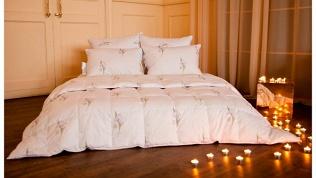 Одеяло или подушка