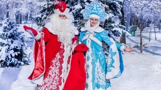 Визит Деда Мороза ишоу