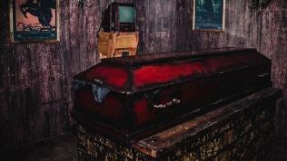 Квест «Дневники вампира»