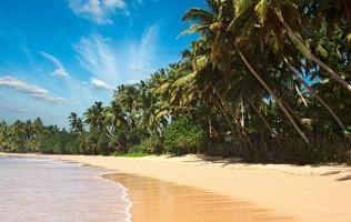 Тур наостров Шри-Ланка