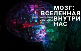 Интерактивная выставка