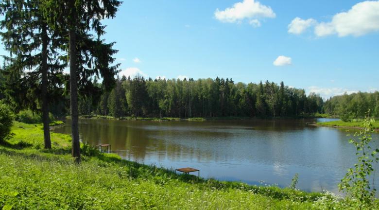 рыбалка в михайловском волоколамского