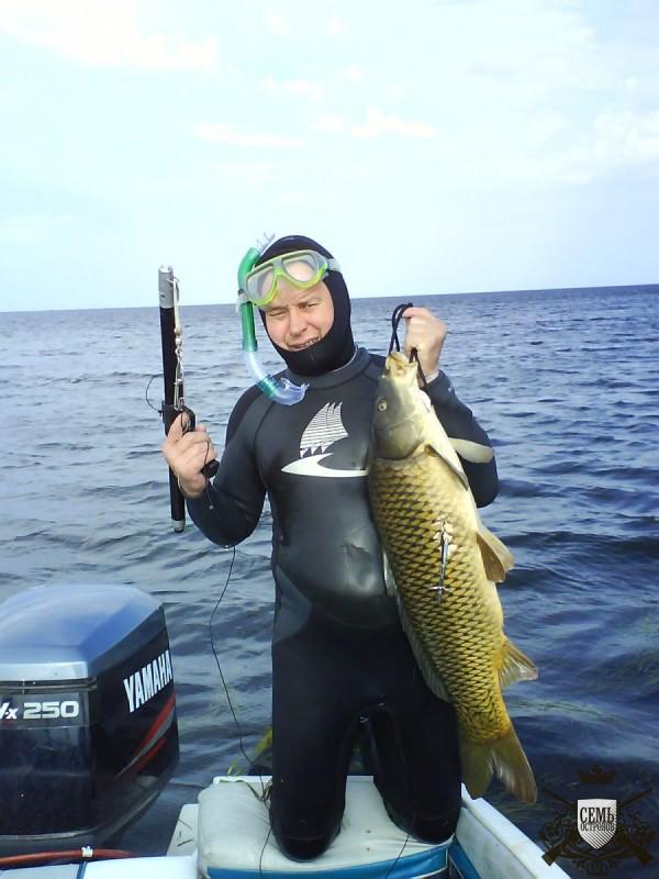рыбалка в примерах