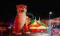 Цирк династии Довгалюк