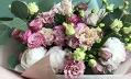 Цветы_Здесь