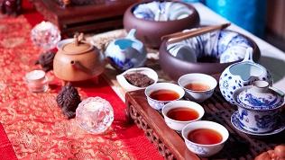 Чайная «Нарния»