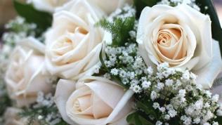 Розы или хризантемы