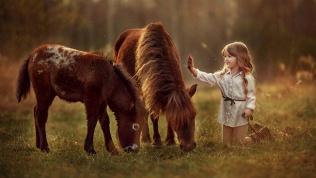 Посещение конного клуба