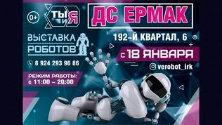 Билет на выставку роботов