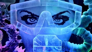 Билет навыставку «Лед»