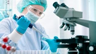 Исследование наинфекции