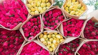 Букет изголландских роз