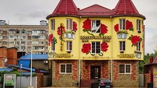 Отель Marton Lion