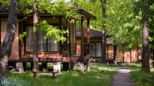 Foresta Festival Park