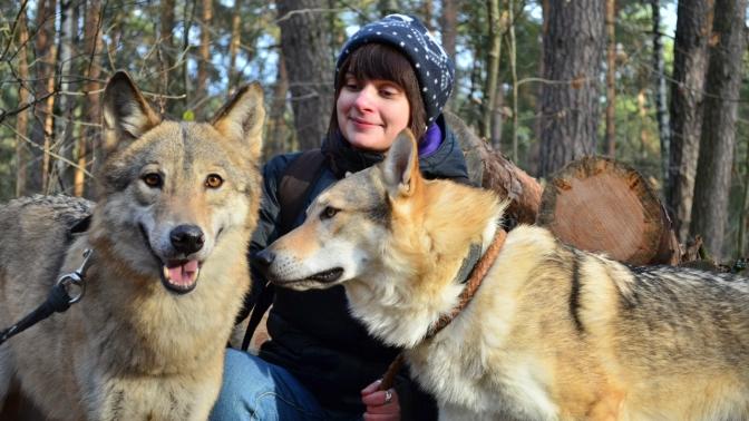 Экскурсия взоостудию животных-актеров «Ковчег»