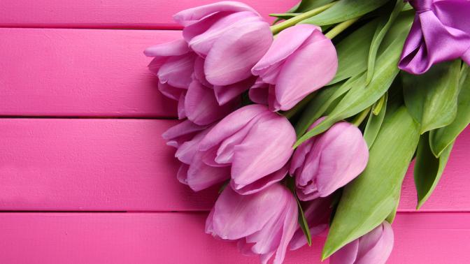 Тюльпаны ицветочные композиции
