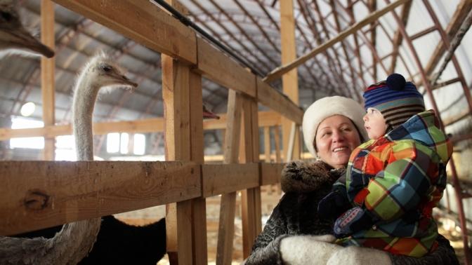 Экскурсия настраусиную экоферму «Русский страус»