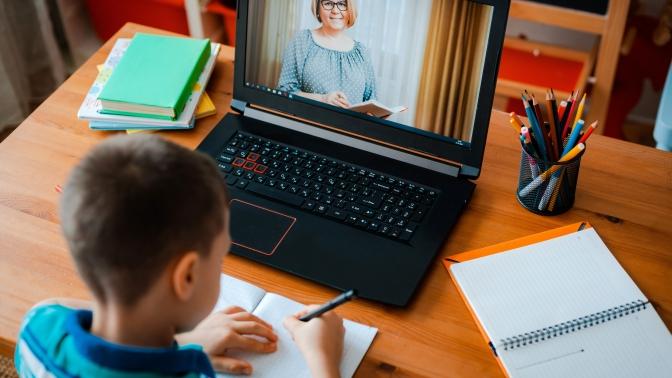 1или 2месяца развивающих занятий для детей спедагогом-куратором наонлайн-платформе «Любознайки»