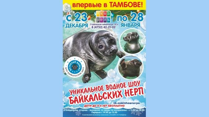 Водное шоу в челябинске сколько стоит билет купить билеты в театр янки купалы