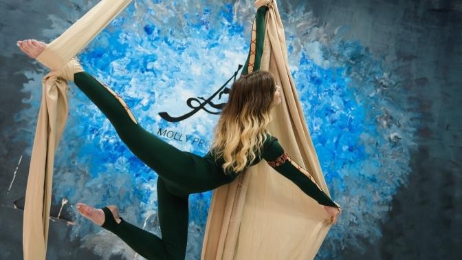 Занятия танцами поодному или всем направлениям либо безлимитное посещениестудии танцев Aloft Molly Project
