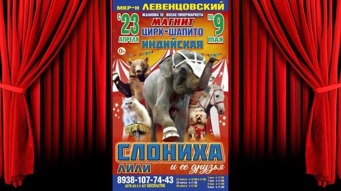 Купить билеты в цирк со скидкой в ростове на дону тополя и ветер спектакль купить билеты