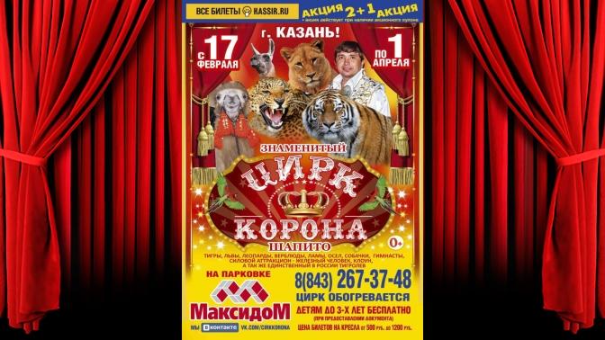 Купить билеты в цирк купоны билеты в галерею кино