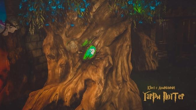 Участие вперформанс-квесте «Гарри Поттер3» сучастием аниматора откомпании Disney Quest
