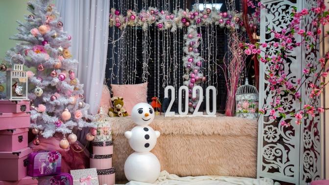 Новогодняя романтическая, классическая, тематическая, семейная или VIP-фотосессия отфотостудии Pinkfotto