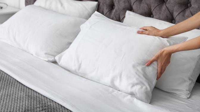 2экоподушки Sanita Eco, Duvet Luxe, Atica Bio Comfort или экоодеяло Sanita Texton Eco либо Atica Texton Comfort