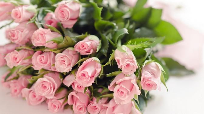 Самая лучшая, открытки маленькие розы с днем рождения